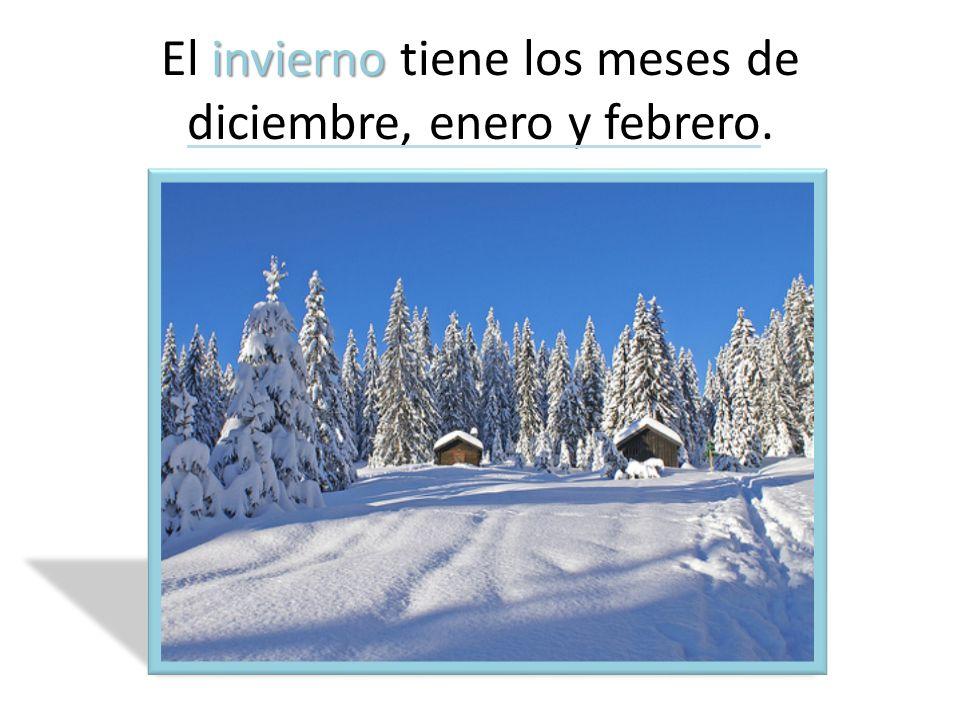 El invierno tiene los meses de diciembre, enero y febrero.