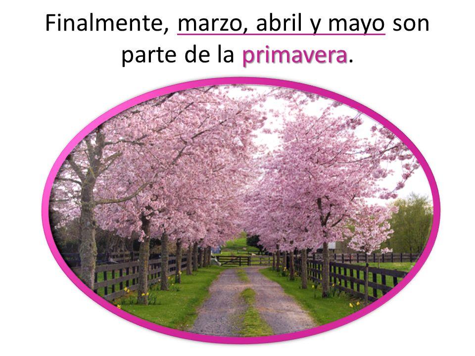 Finalmente, marzo, abril y mayo son parte de la primavera.