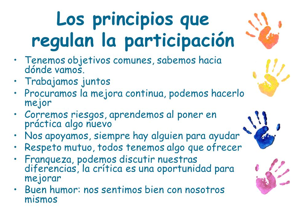 Los principios que regulan la participación