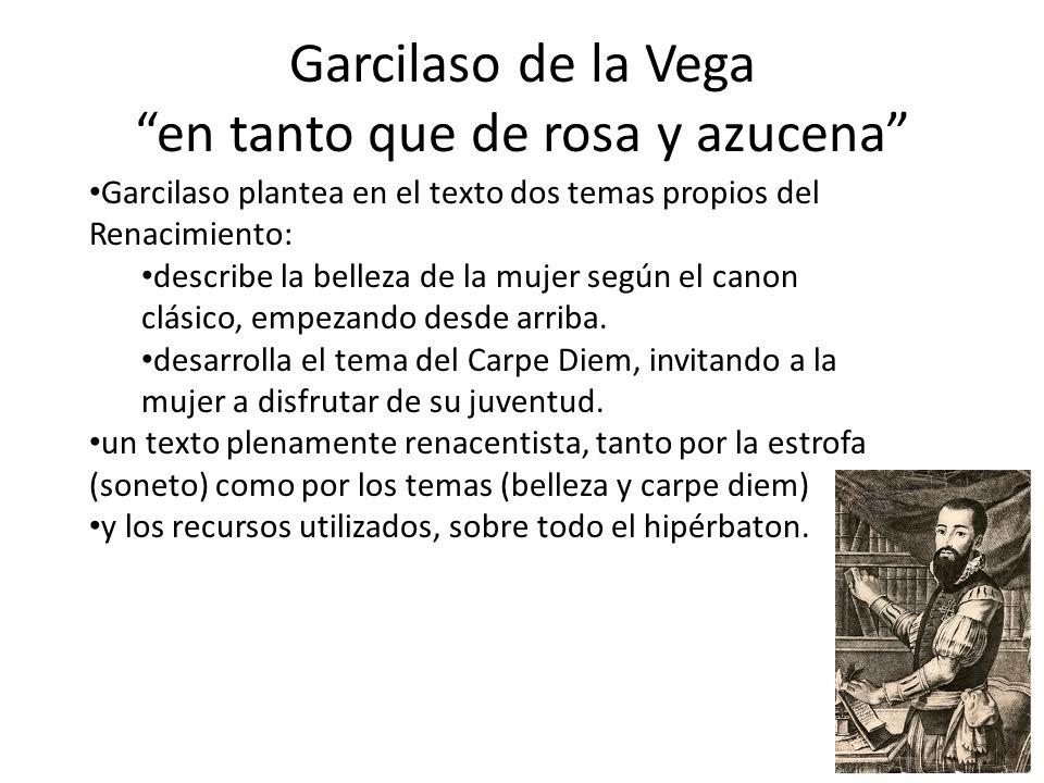 Garcilaso de la Vega en tanto que de rosa y azucena