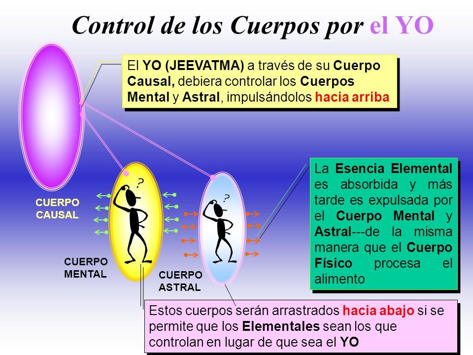 Control de los Cuerpos por el YO
