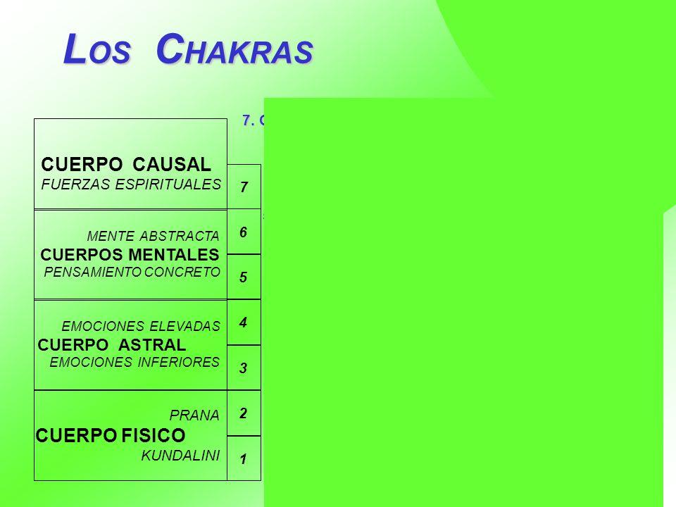 LOS CHAKRAS CUERPO CAUSAL CUERPO FISICO CUERPOS MENTALES CUERPO ASTRAL