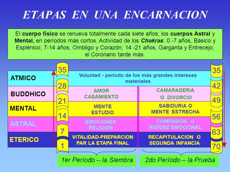 ETAPAS EN UNA ENCARNACION