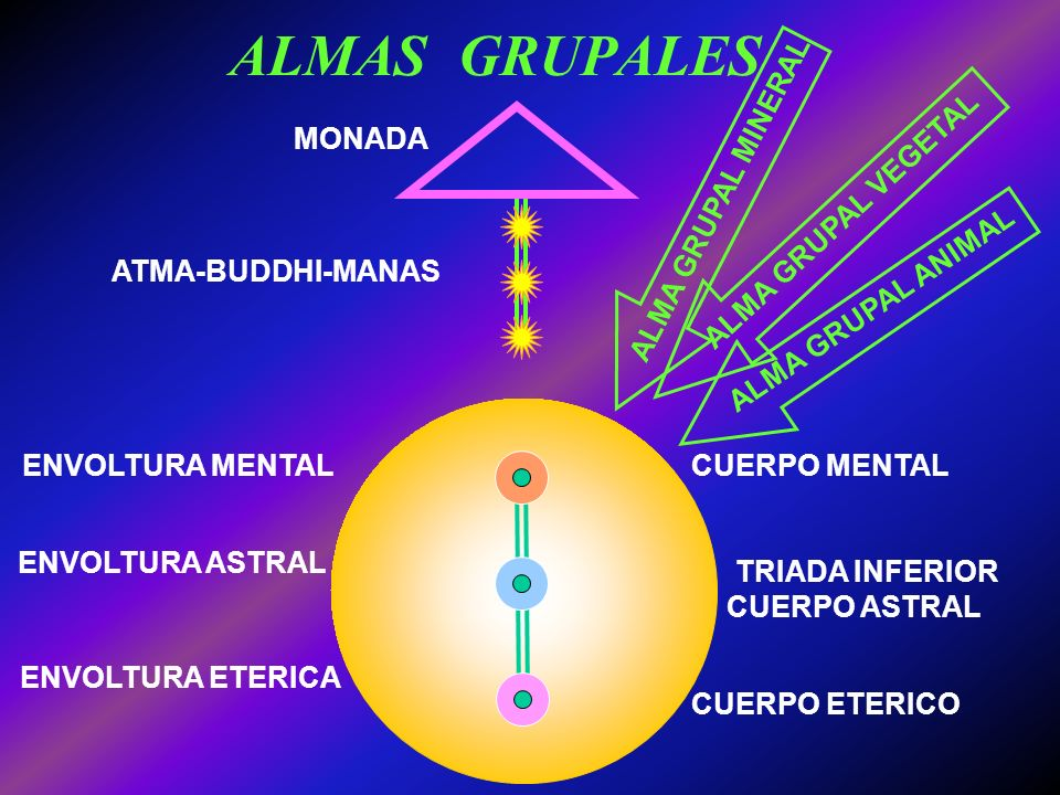 ALMAS GRUPALES MONADA ALMA GRUPAL MINERAL ALMA GRUPAL VEGETAL