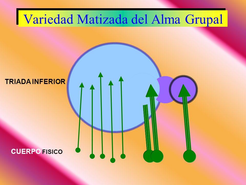 Variedad Matizada del Alma Grupal