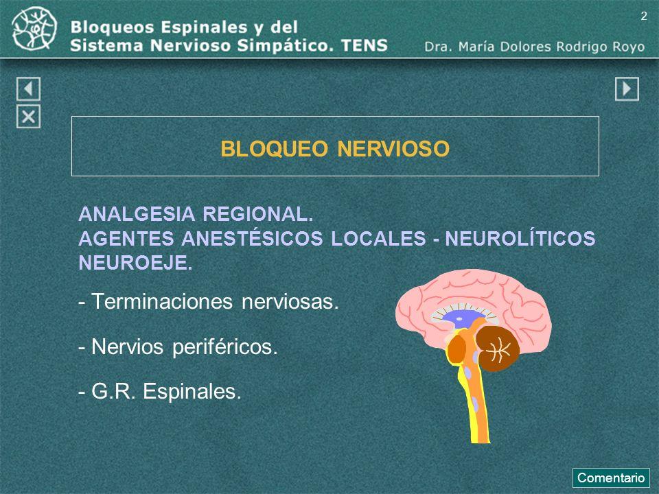 - Terminaciones nerviosas. - Nervios periféricos. - G.R. Espinales.