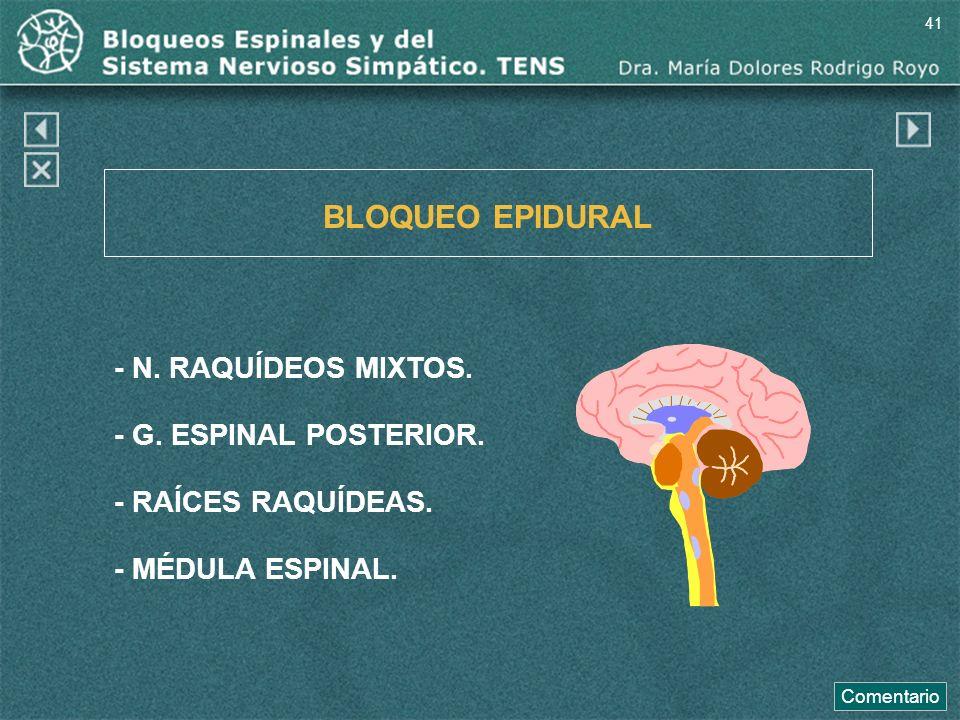 BLOQUEO EPIDURAL - N. RAQUÍDEOS MIXTOS. - G. ESPINAL POSTERIOR.