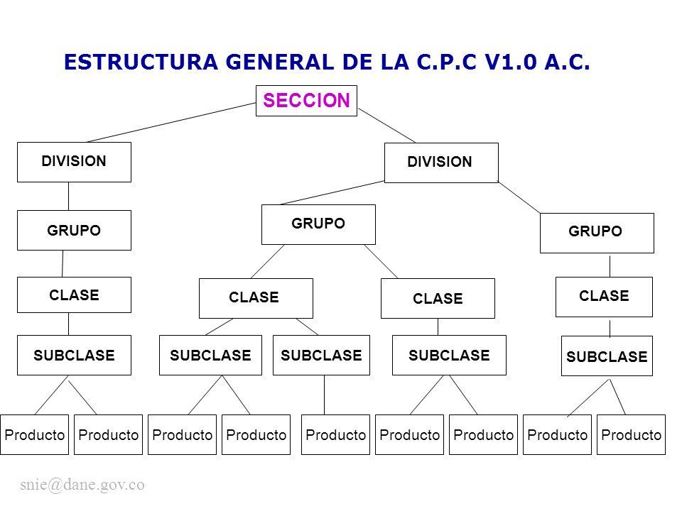 ESTRUCTURA GENERAL DE LA C.P.C V1.0 A.C.