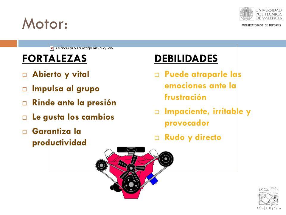 Motor: FORTALEZAS DEBILIDADES Abierto y vital Impulsa al grupo