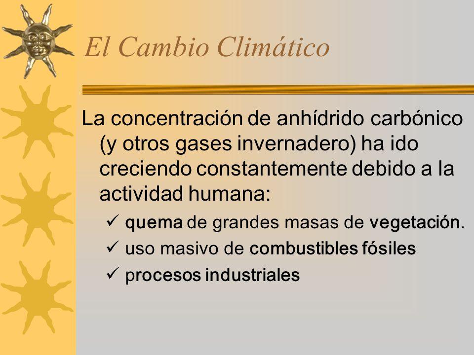El Cambio Climático La concentración de anhídrido carbónico (y otros gases invernadero) ha ido creciendo constantemente debido a la actividad humana: