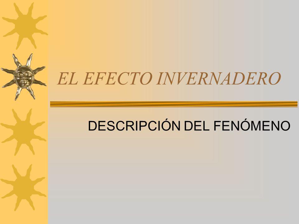 DESCRIPCIÓN DEL FENÓMENO