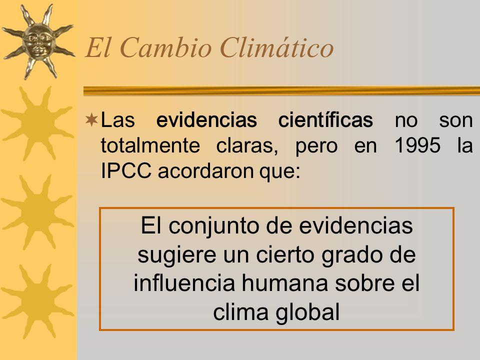 El Cambio Climático Las evidencias científicas no son totalmente claras, pero en 1995 la IPCC acordaron que: