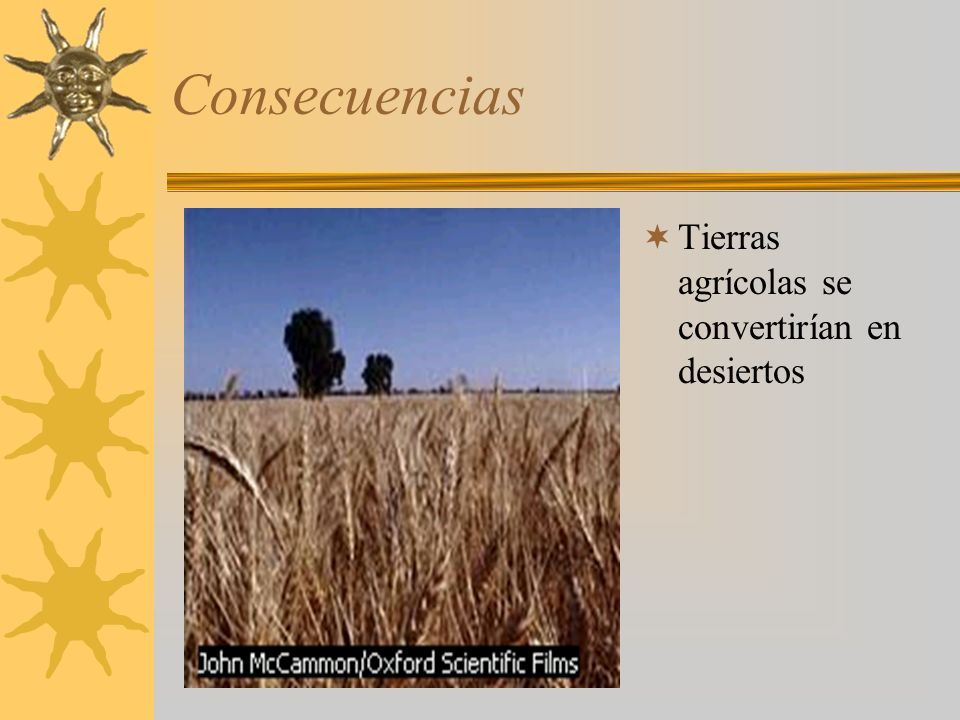 Consecuencias Tierras agrícolas se convertirían en desiertos