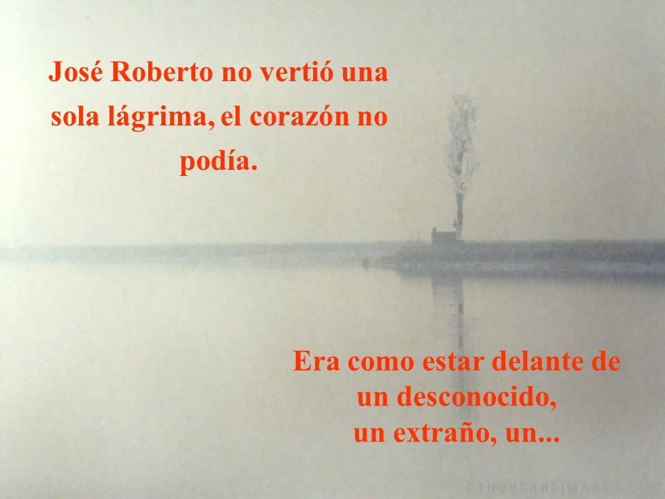 José Roberto no vertió una sola lágrima, el corazón no podía.