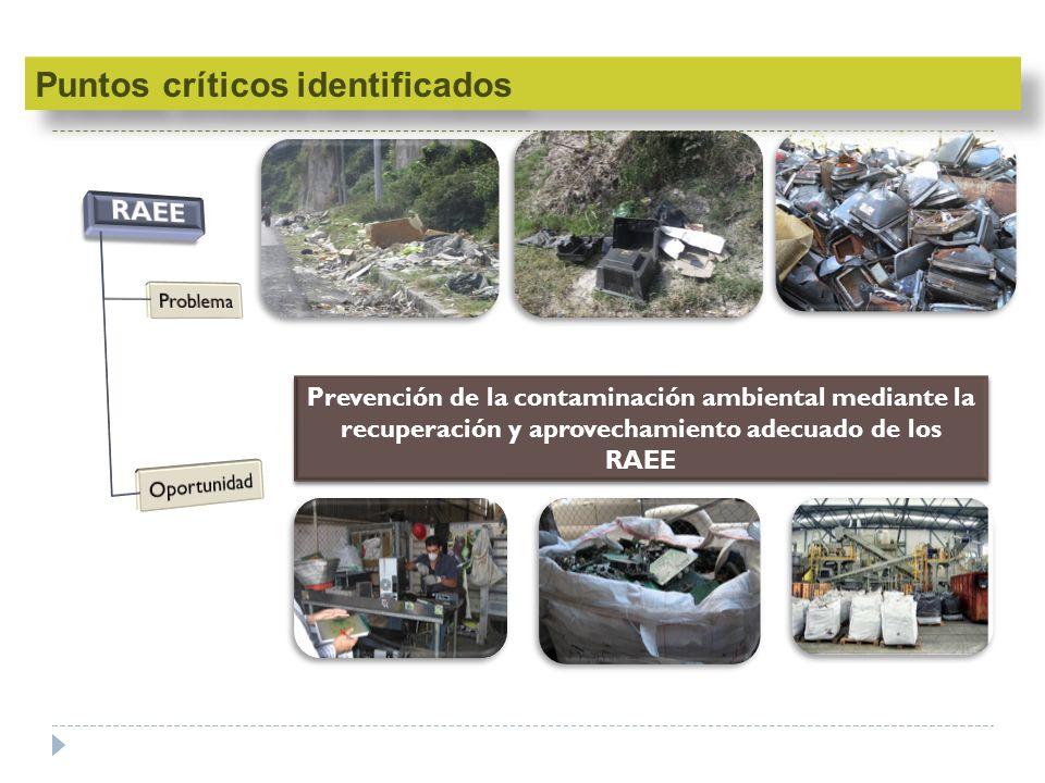 Puntos críticos identificados RAEE
