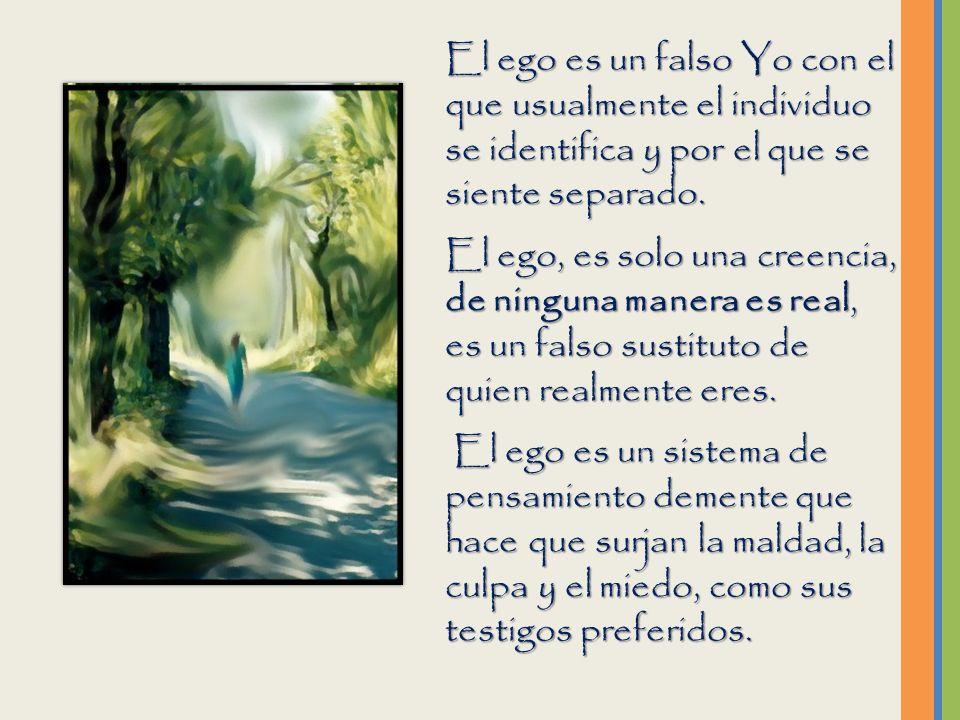 El ego es un falso Yo con el que usualmente el individuo se identifica y por el que se siente separado.