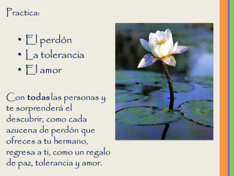 El perdón La tolerancia El amor Practica: