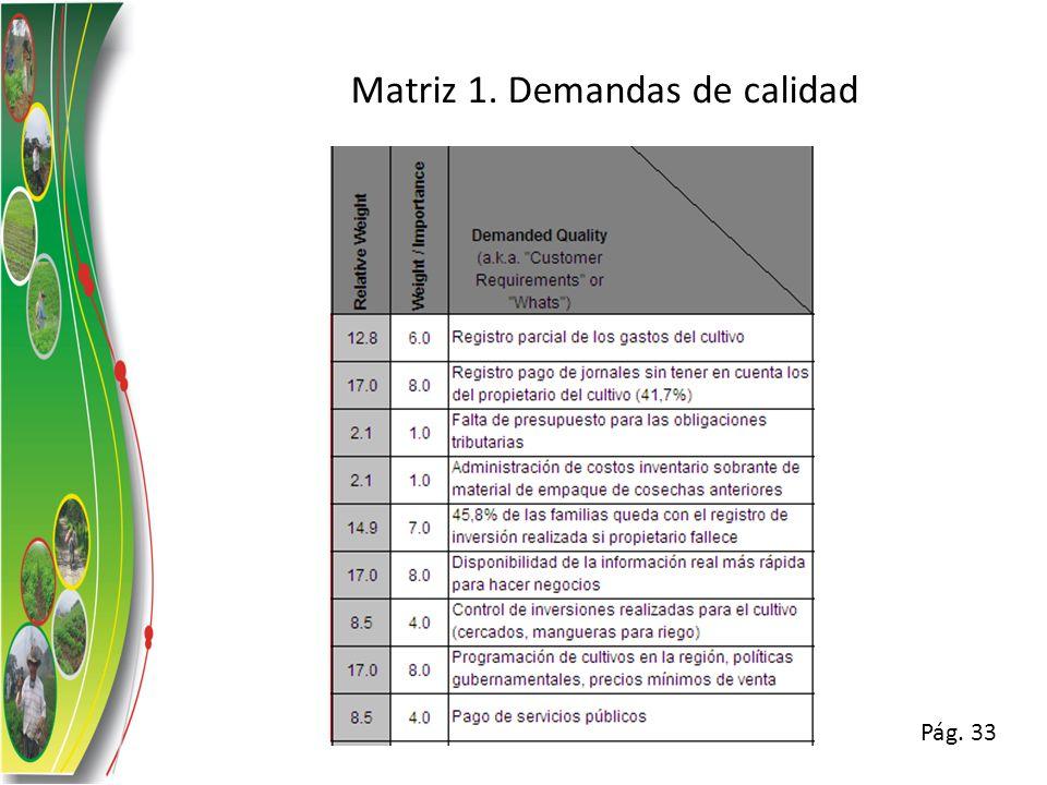 Matriz 1. Demandas de calidad
