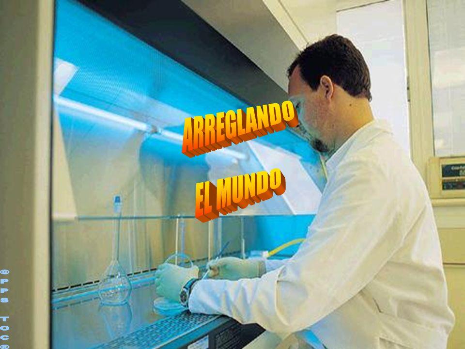 ARREGLANDO EL MUNDO ©PPS TOC®