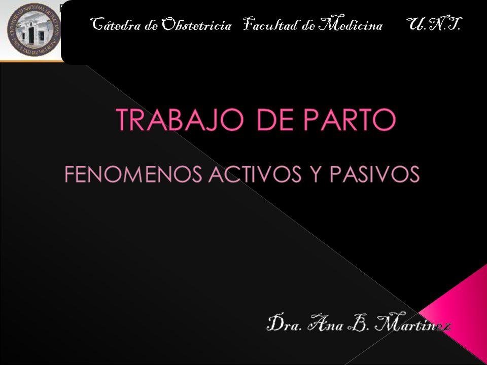 FENOMENOS ACTIVOS Y PASIVOS Dra. Ana B. Martinez