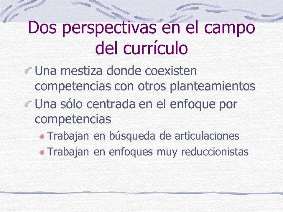 Dos perspectivas en el campo del currículo