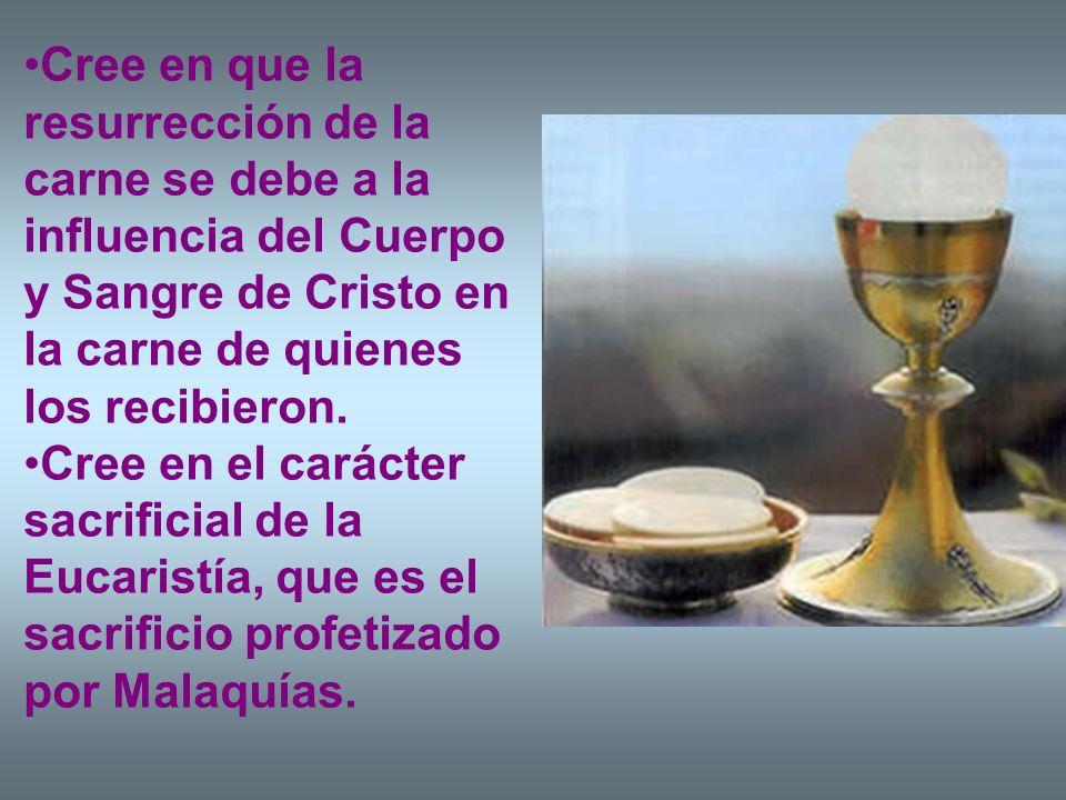 Cree en que la resurrección de la carne se debe a la influencia del Cuerpo y Sangre de Cristo en la carne de quienes los recibieron.