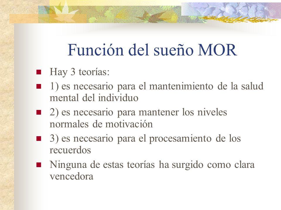 Función del sueño MOR Hay 3 teorías: