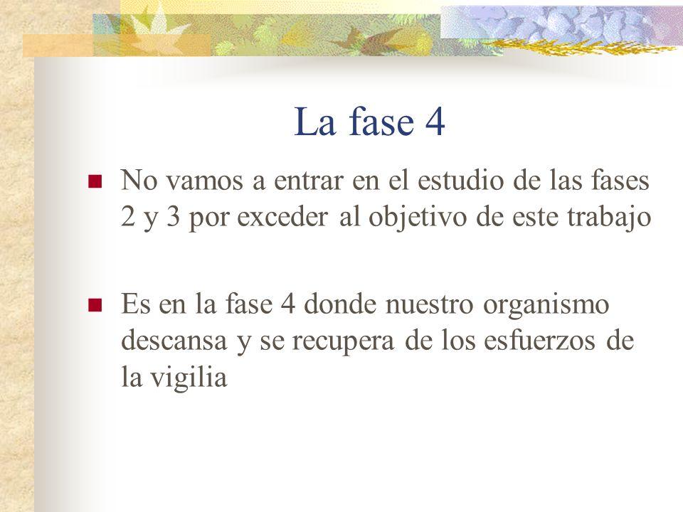 La fase 4 No vamos a entrar en el estudio de las fases 2 y 3 por exceder al objetivo de este trabajo.