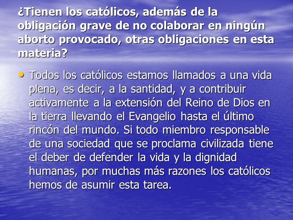 ¿Tienen los católicos, además de la obligación grave de no colaborar en ningún aborto provocado, otras obligaciones en esta materia