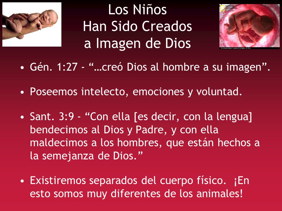 Los Niños Han Sido Creados a Imagen de Dios