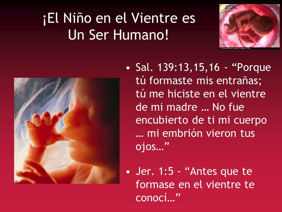 ¡El Niño en el Vientre es Un Ser Humano!