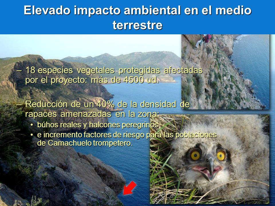 Elevado impacto ambiental en el medio terrestre