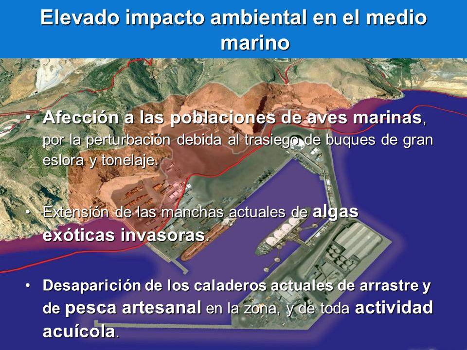 Elevado impacto ambiental en el medio marino
