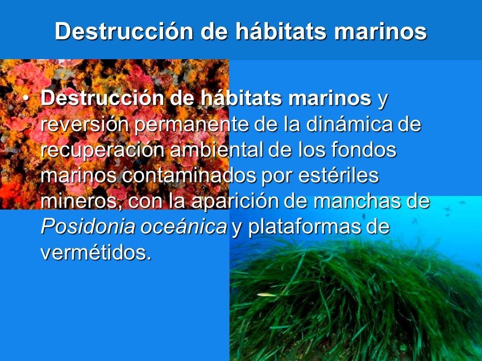 Destrucción de hábitats marinos