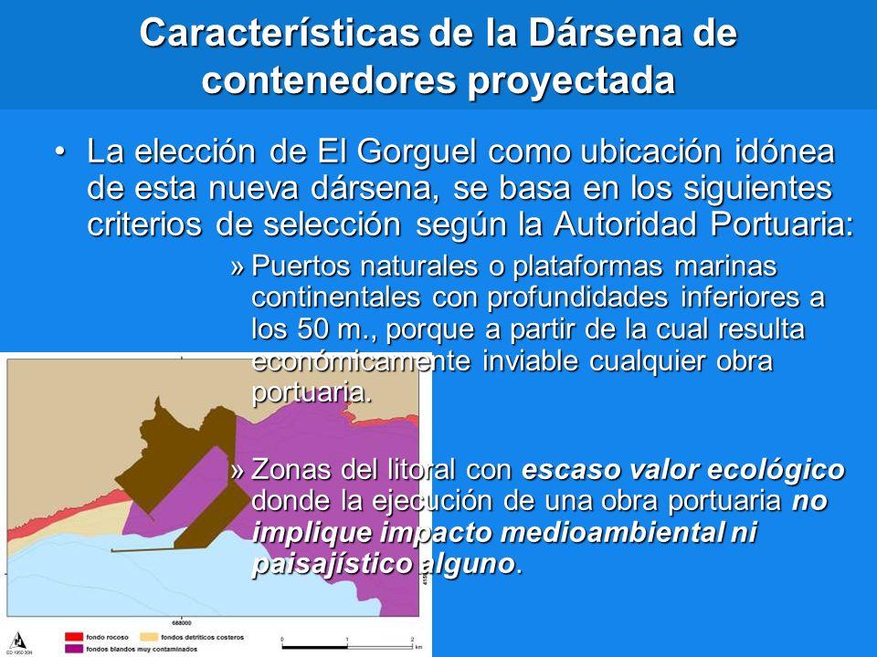 Características de la Dársena de contenedores proyectada