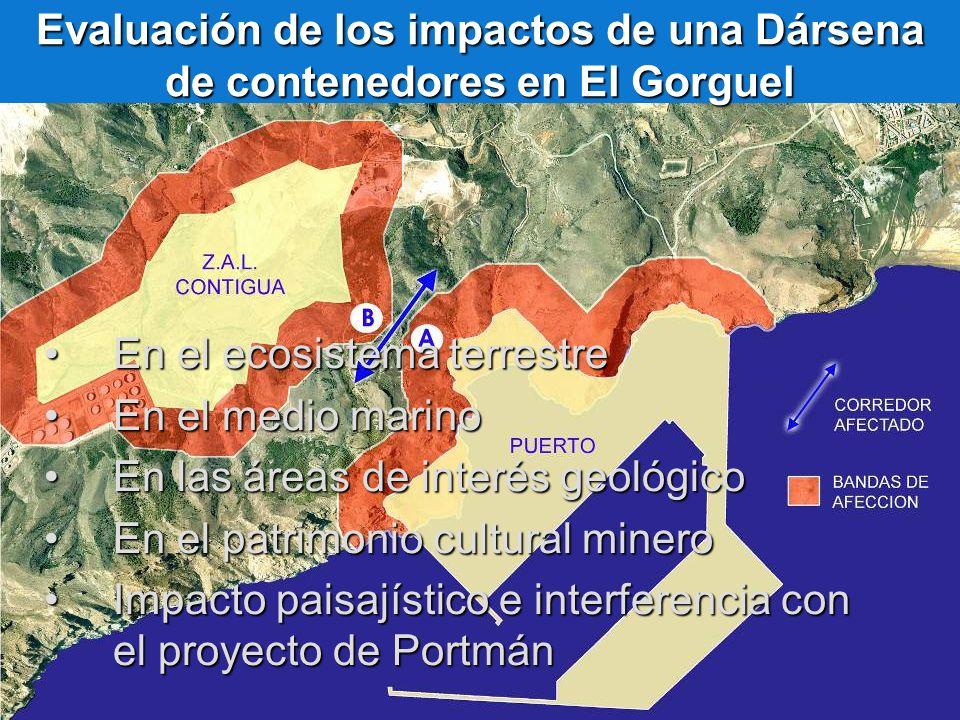 Evaluación de los impactos de una Dársena de contenedores en El Gorguel