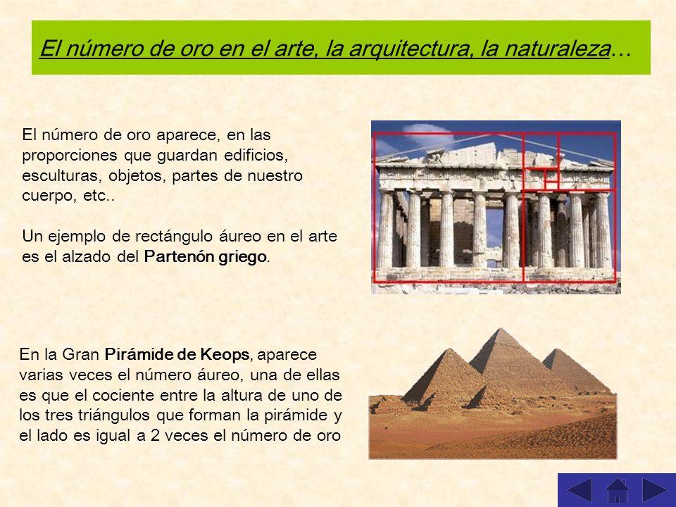 El número de oro en el arte, la arquitectura, la naturaleza…