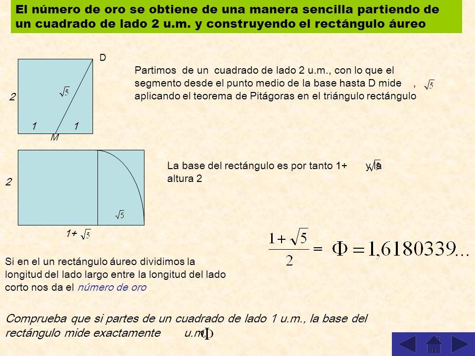 El número de oro se obtiene de una manera sencilla partiendo de un cuadrado de lado 2 u.m. y construyendo el rectángulo áureo
