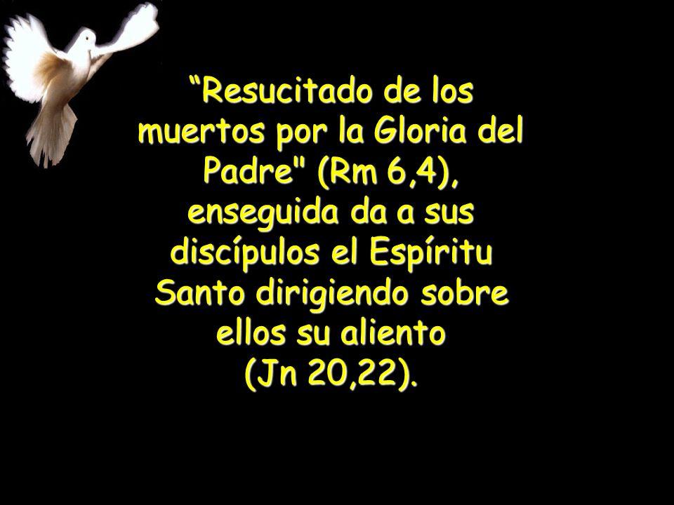 Resucitado de los muertos por la Gloria del Padre (Rm 6,4), enseguida da a sus discípulos el Espíritu Santo dirigiendo sobre ellos su aliento