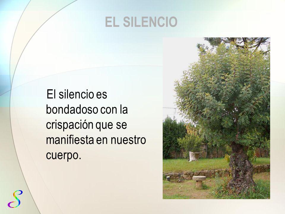 EL SILENCIO El silencio es bondadoso con la crispación que se manifiesta en nuestro cuerpo.