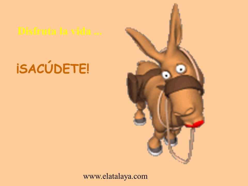 Disfruta la vida ... ¡SACÚDETE! www.elatalaya.com