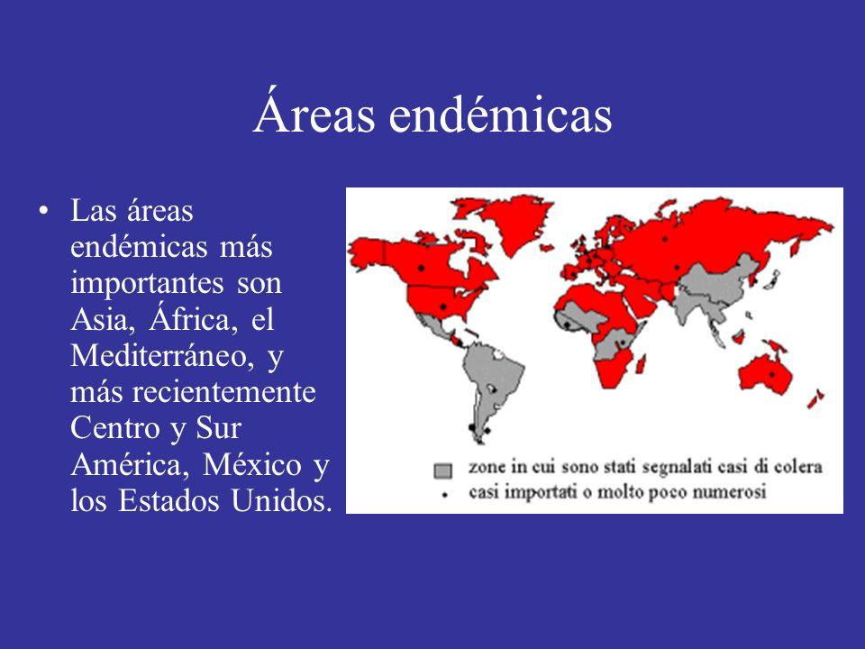 Áreas endémicas