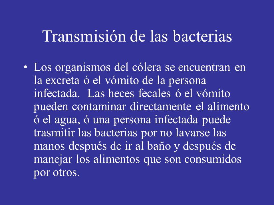 Transmisión de las bacterias