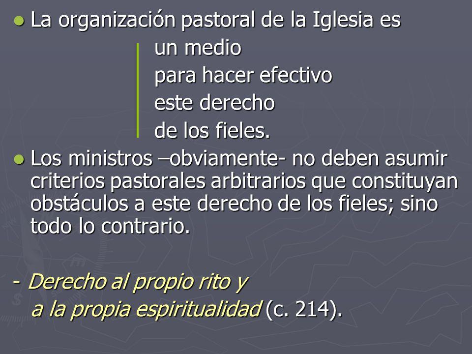 La organización pastoral de la Iglesia es