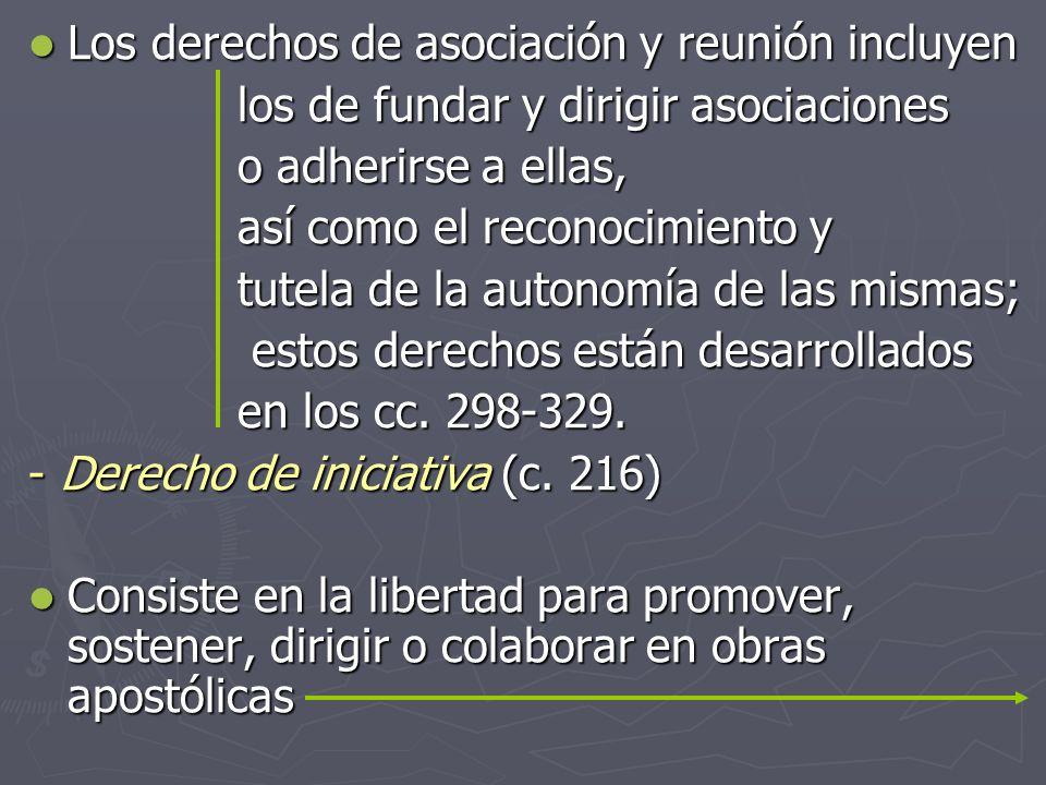 Los derechos de asociación y reunión incluyen