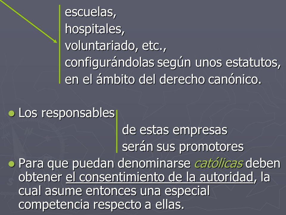 escuelas, hospitales, voluntariado, etc., configurándolas según unos estatutos, en el ámbito del derecho canónico.