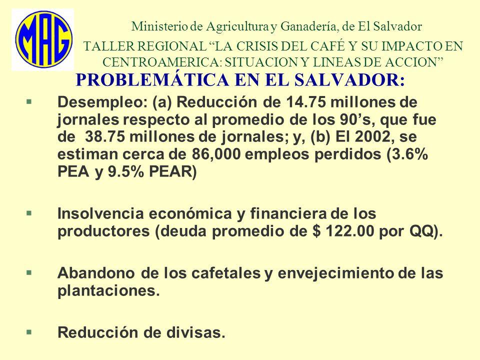 PROBLEMÁTICA EN EL SALVADOR: