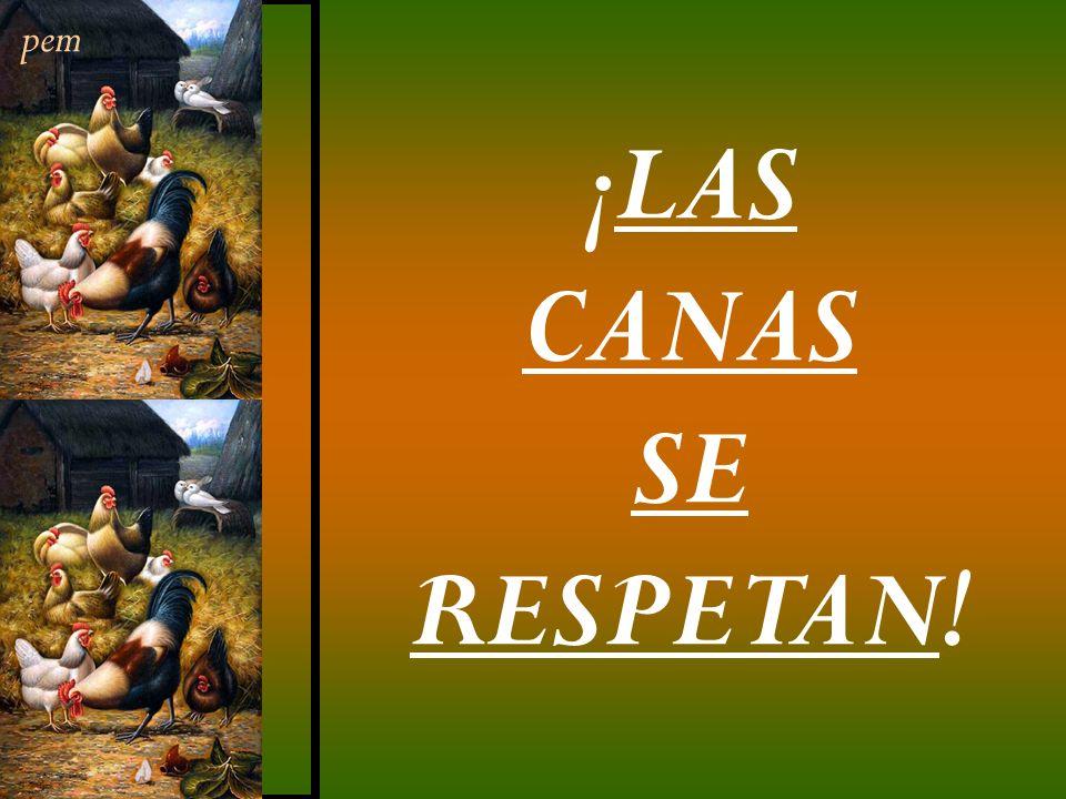 pem ¡LAS CANAS SE RESPETAN!