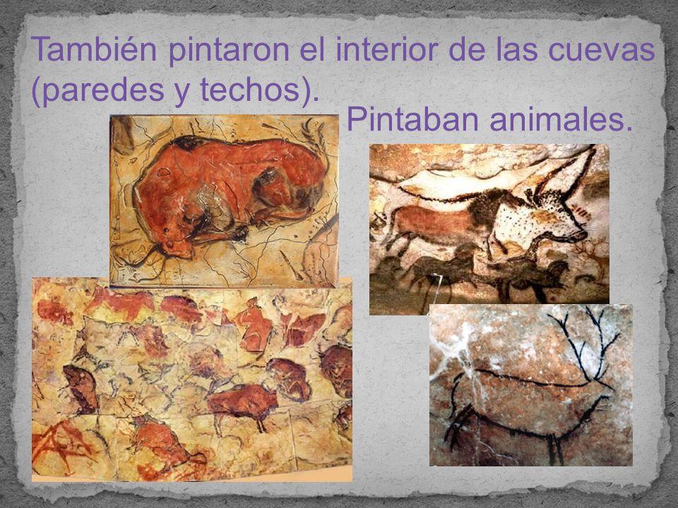 También pintaron el interior de las cuevas (paredes y techos).