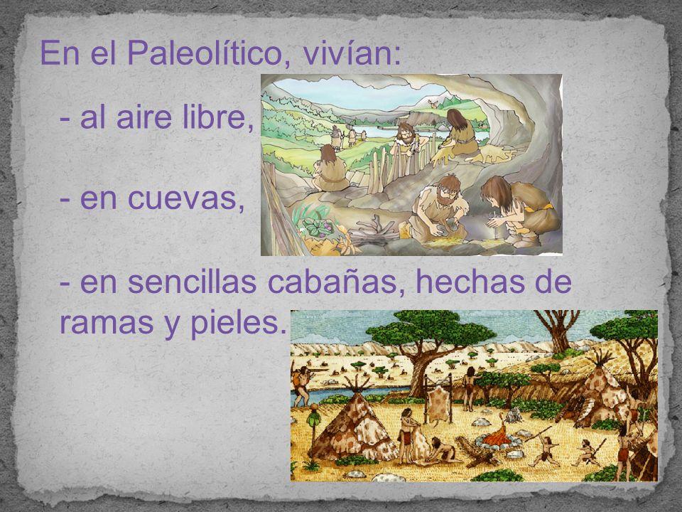En el Paleolítico, vivían: